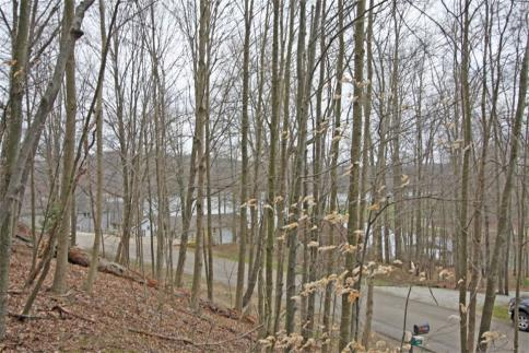 Lot 327 Baldwin Heights Subdivision Howard Ohio 43028 at The Apple Valley Lake